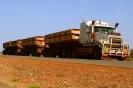 Trucks_18