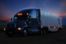 Trucks_21